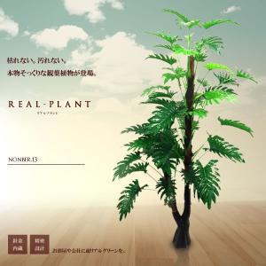 観葉植物 造花 リアルプラント13 大型 人工 部屋 リアル 会社 緑 おしゃれ インテリア フェイクグリーン KZ-XTS-E13-170  予約|kasimaw