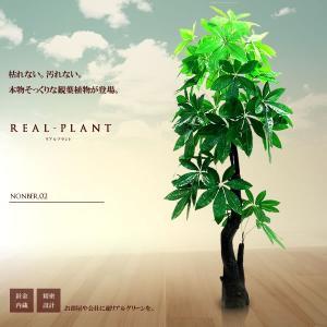 観葉植物 造花 リアルプラント02 大型 人工 部屋 リアル 会社 緑 おしゃれ インテリア フェイクグリーン KZ-FC-E2-170  予約|kasimaw
