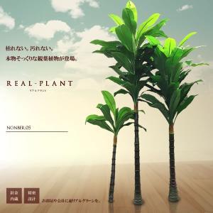 観葉植物 造花 リアルプラント05 大型 人工 部屋 リアル 会社 緑 おしゃれ インテリア フェイクグリーン KZ-HUO-E5-180 予約|kasimaw