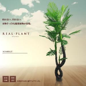 観葉植物 造花 リアルプラント07 大型 人工 部屋 リアル 会社 緑 おしゃれ インテリア フェイクグリーン KZ-KUI-E7-185 予約|kasimaw