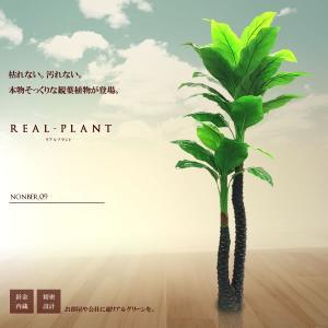 観葉植物 造花 リアルプラント09 大型 人工 部屋 リアル 会社 緑 おしゃれ インテリア フェイクグリーン KZ-MEI-E9-170  予約|kasimaw