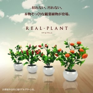 観用植物 4個セット 造花 人工 部屋 リアル 会社 緑 おしゃれ インテリア フェイクグリーン KZ-028-B 即納 kasimaw
