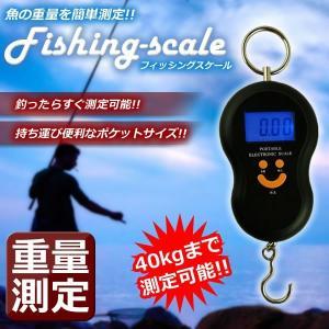フィッシング スケール 釣り 魚 重量 重さ 測定 釣果 吊り下げ式 アウトドア 海 川 KZ-NIKOMO|kasimaw