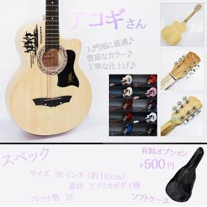 アコギさん アコースティック ギター 入門用 初心者 KZ-ACOSAN 即納|kasimaw
