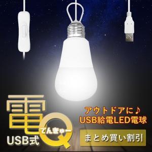 USB給電式LED電球 電Q 2個セット 3m 中間スイッチ 明かり ライト アウトドア キャンプ 夜釣り 車中泊 簡単 夜 夜間 電灯 KZ-USBDENQ 即納|kasimaw