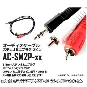 オーディオケーブル ステレオミニプラグ-2ピン-AC-SM2P 即納|kasimaw