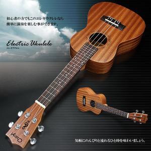 エレキウクレレ 初心者 演奏 可能 音楽 アンプ 接続可能 海 山 自宅 専用バッグ付属 ギター 楽器 趣味 KZ-NEWEKRERE 予約|kasimaw