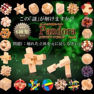 6個セット 謎解き パズル パンドラ 木 立体 知恵 ミステリー 謎 教育 学び 頭 楽しい 組み立て KZ-PANKUN 予約 kasimaw