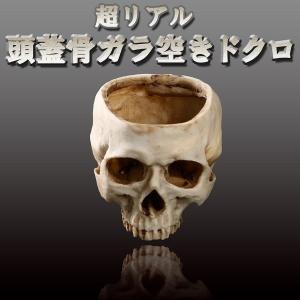 超リアル 頭蓋骨ガラ空き ドクロ 髑髏 インテリア イベント 小道具 骨 模型 植木鉢 KZ-GARADOKU 即納|kasimaw
