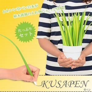 草 ボールペン 35本セット インテリア オシャレ 植木鉢 KFK7164|kasimaw