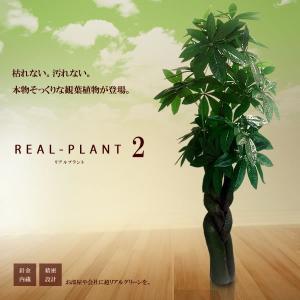 観葉植物 造花 新型リアルプラント大型 人工 部屋 リアル 会社 緑 おしゃれ インテリア フェイクグリーン KZ-MI-PAKIRA-155-E1  即納|kasimaw
