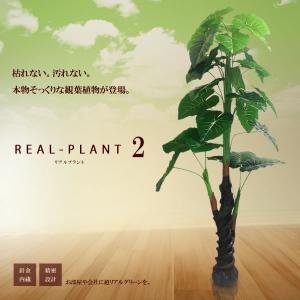 観葉植物 造花 新型リアルプラント大型 人工 部屋 リアル 会社 緑 おしゃれ インテリア フェイクグリーン KZ-MI-IMO-170-E2  即納|kasimaw
