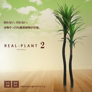 観葉植物 造花 新型リアルプラント大型 人工 部屋 リアル 会社 緑 おしゃれ インテリア フェイクグリーン KZ-MI-2HONLAN-E6  予約|kasimaw