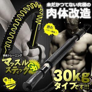 マッスルスティックGA 30kgタイプ アームバー 振ったり 曲げたり お手軽 トレーニング 筋トレ バネ スプリング YT-B106-30|kasimaw