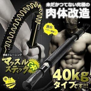 マッスルスティックGA 40kgタイプ アームバー 振ったり 曲げたり お手軽 トレーニング 筋トレ バネ スプリング YT-B106-40|kasimaw