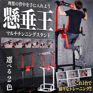 懸垂王 マルチ チンニングスタンド 懸垂マシン 筋肉 トレーニング KZ-KENSUIOH 即納|kasimaw