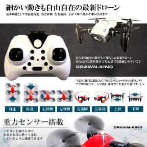 ドローンキング ラジコン 小型 カメラ 折畳式 モニタリング スマホ 遠隔 リモコン 3D飛行 バンパー付属 おしゃれ 高性能 DOROKING 即納|kasimaw|05