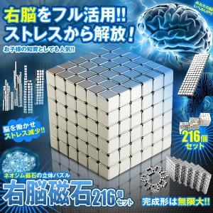右脳 ネオジウム 磁石 216個セット 燃費向上 磁力 工作 プラモデル DIY バイク 知育 子供 創造力 UNOUZISHAK|kasimaw