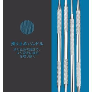 本格 デンタルケアセット 歯のいろは ステンレス ツール 4点セット かき出し棒 歯石取り スケーラー ミラー 歯 虫歯予防DENKEA|kasimaw|02