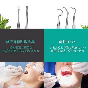 本格 デンタルケアセット 歯のいろは ステンレス ツール 4点セット かき出し棒 歯石取り スケーラー ミラー 歯 虫歯予防DENKEA|kasimaw|03