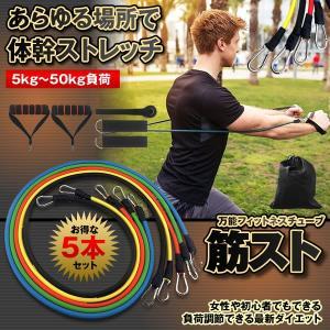 筋スト トレーニングチューブ フィットネス エクササイズ 5kg〜50kg負荷 腹筋 女性 初心者 ダイエット 筋トレ 体幹 ストレッチ KINSTO|kasimaw