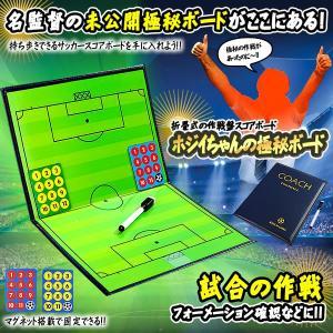 ホジイちゃんの 極秘ボード サッカー フットサル バスケットボール バレーボール 作戦盤 折りたたみ HOJIHOJIBOARD