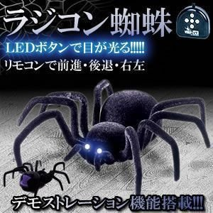 ジャンク品 スパイダーラジコン クモ 蜘蛛 「 タランチュラ 」 KZ-TARA01 即納|kasimaw