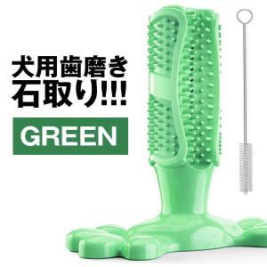 ペット用歯ブラシ グリーン 犬用おもちゃ 犬歯ブラシ 歯磨きシート 子犬かむ玩具 犬用歯ブラシ PEBURA-GR|kasimaw