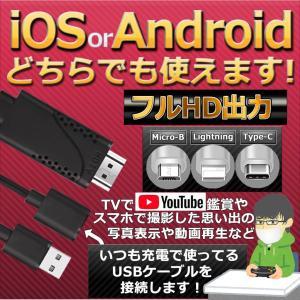 テレビ 接続 iOS iPhone iPad Android hdmi 変換 対応 アダプタ ケーブル 3in1 フルHD USB ミラーリング テレビ 映す TypeC BLACKPORT|kasimaw