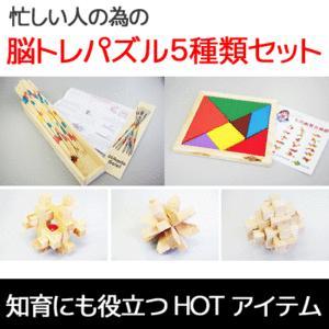 遊びながら脳トレーニング 知育 教育 玩具 おもちゃ ミカド 孔明 図形 パズル5種セット MI-PZ05 予約|kasimaw