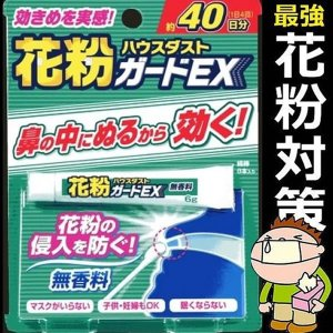 花粉ガードEX 無香料 鼻腔クリーム 6g 綿棒 8本 杉花粉 ハウスダスト 花粉症 対策 SA-KHNMKR|kasimaw