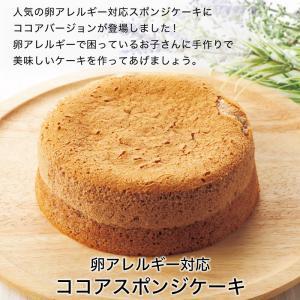 【 ココアスポンジケーキ 】 卵アレルギー対応  ケーキ  菓子 アレルギー対応ケーキ スイーツ 誕生日 プレゼント 贈り物 ギフト|kasinoki