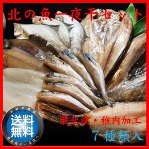 干物 一夜干し 詰合せ 送料無料 ギフト 贈り物 真空 海産物 北の魚 一夜干し セット