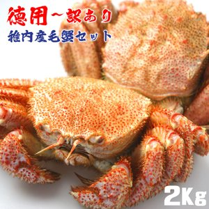 毛ガニ 訳あり セット 蟹 蟹みそ 北海道 稚内 詰合せ 2Kg