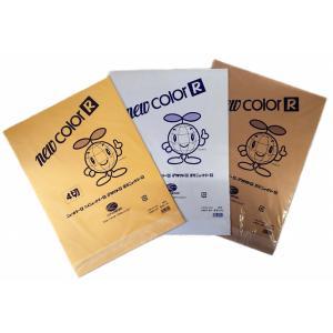 色画用紙(ニューカラー金・銀・銅) 4切 単色 10枚入 kasugado
