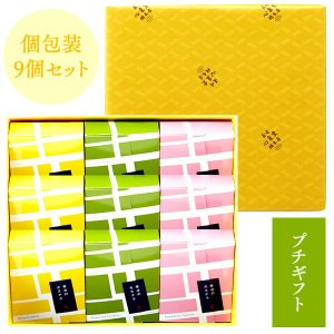 (父の日 お菓子 詰め合わせ) 長崎カステラ 個包装 9個 セット (ギフト スイーツ 和菓子 寒中見舞い) TK20x9|kasutera1ban