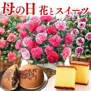 母の日 花 カーネーション 早割 ( 2021 ギフト プレゼント 母の日ギフト 和菓子 プリン リース アロマ ) カステラ 0.5号 花とスイーツ 5号 MDIT|kasutera1ban