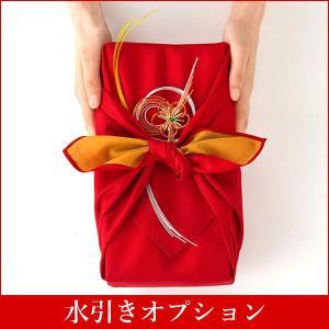 飾り水引【風呂敷商品専用】【ギフトオプション】|kasutera1ban