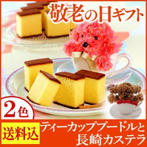 敬老の日 ギフト 長崎カステラ ティーカッププードル 和菓子 洋菓子 スイーツ 送料無料・込 2017年 KRG1 kasutera1ban