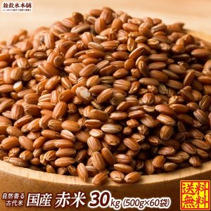 絶品 赤米 30kg (500g x 60袋) 業務用サイズ 厳選国産 送料無料|katochanhonpo