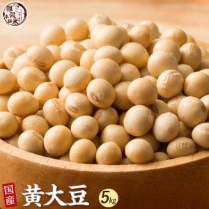 雑穀 黄大豆 5kg (500g×10袋) 大豆 生豆 国産 業務用サイズ 送料無料|katochanhonpo