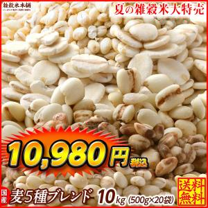 絶品 麦5種ブレンド 10kg (500g x 20袋) 業務用サイズ 厳選国産 [丸麦 胚芽押麦 はだか麦 もち麦 はと麦]  送料無料|katochanhonpo