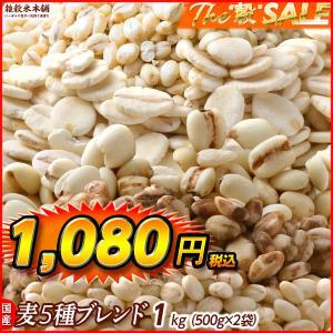 雑穀 麦 国産 麦5種ブレンド(丸麦/押麦/はだか麦/もち麦/はと麦) 1kg(500g×2袋) 送...