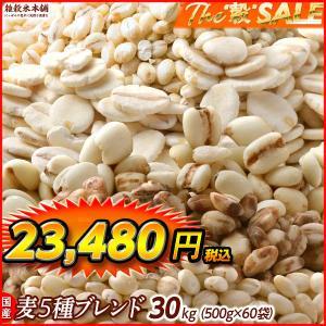 絶品 国産 麦5種ブレンド(丸麦/押麦/はだか麦/もち麦/はと麦) 30kg(500g x60袋) 業務用サイズ  送料無料|katochanhonpo