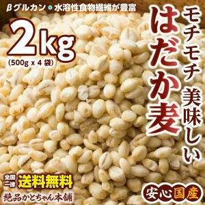絶品 裸麦 2kg(500g×4袋)徳用サイズ 厳選国産 はだか麦 六条大麦 送料無料 ポスト投函|katochanhonpo
