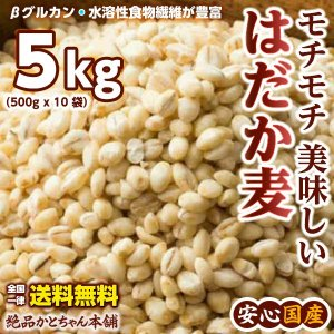 雑穀 はだか麦 5kg(500g×10袋) 裸麦 国産 業務用サイズ 送料無料|katochanhonpo