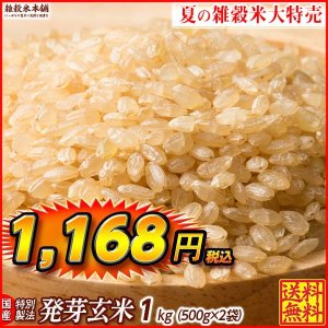 米 雑穀 発芽玄米 国産 発芽玄米 1kg(500g x2袋) 送料無料 プレミアム SALE|katochanhonpo