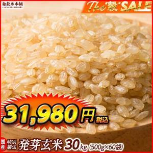 絶品 最高級 発芽玄米 30kg (500g x 60袋) 厳選国産 業務用サイズ 送料無料|katochanhonpo