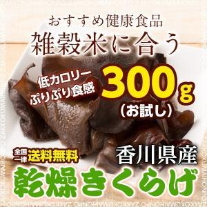 絶品 乾燥きくらげ 300g 香川県産 きくらげ 木耳 無添加 キクラゲ 送料無料 ポスト投函|katochanhonpo