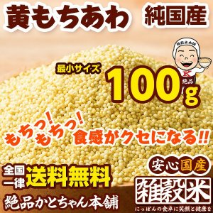 米 雑穀 雑穀米 国産 もちあわ 100g 送料無料 雑穀米本舗|katochanhonpo